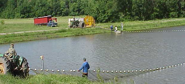 Fish Species for Pond Stocking and Lake Stocking- Harrison