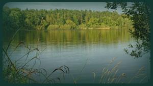Pond Stocking, Lake Stocking, Fish Farm, Hatchery, Pond